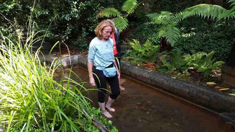 Lichtgidsen Glastonbury Chalice Well In het water